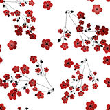 Seamless floral pattern with flowers texture on white Stock Image