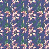 Seamless floral pattern with flowers Stock Images