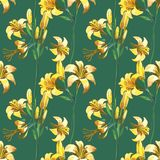 Seamless floral pattern with flowers Stock Image
