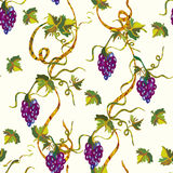 Seamless floral pattern with grape Royalty Free Stock Photo