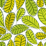 Seamless floral pattern, green leaves seamless background, hand Stock Photos