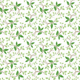 Seamless floral pattern with green leaves. Vector illustration. Stock Photos