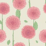 Seamless floral pattern. Hand drawn illustration for fabric, wrapping, prints, cards, wedding design in vintage style. Seamless floral pattern, pink flowers Stock Photography