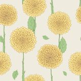 Seamless floral pattern. Hand drawn illustration for fabric, wrapping, prints, cards, wedding design in vintage style. Seamless floral pattern, yellow flowers Stock Photography