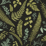 Seamless floral pattern with herbs and leaves. Seamless floral pattern in vintage style. Leaves and herbs. Botanical illustration. Boxwood, seeded eucalyptus Stock Photography