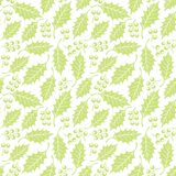 Seamless floral pattern with holly Royalty Free Stock Image