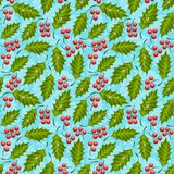 Seamless floral pattern with holly Stock Images