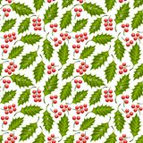 Seamless floral pattern with holly Royalty Free Stock Images