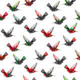 Seamless floral pattern hummingbirds. Stock Photography