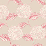 Seamless floral pattern with  hydrangeas Royalty Free Stock Images
