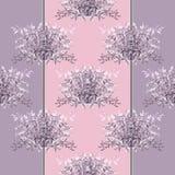 Seamless floral pattern Italian herbs. Stock Image