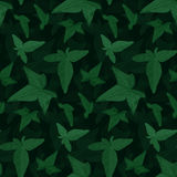 Seamless floral pattern. Ivy elements background Stock Image
