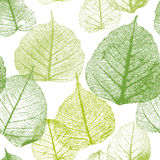 Seamless floral pattern with leaves. Stock Photo