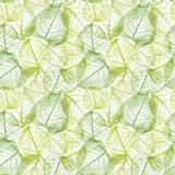Seamless floral pattern with leaves. Stock Images