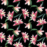Seamless floral pattern lilies. Royalty Free Stock Photos