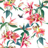 Seamless floral pattern lilies. Royalty Free Stock Image