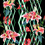 Seamless floral pattern lilies. Seamless floral pattern of tropical lilies, hibiscus flowers and a hovering hummingbird, with vertical diamond ornament, woven Royalty Free Stock Photo