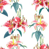 Seamless floral pattern lilies. Stock Image