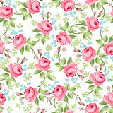 Seamless floral pattern with little red roses Stock Images