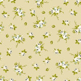 Seamless floral pattern with little white roses Stock Photography