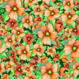 Seamless floral pattern made of orange and red malva flowers on dark green background. Watercolor painting. Hand drawn and painted illustration. Can be used as Royalty Free Stock Photos