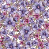 Seamless floral pattern made of pink and purple malva flowers on white background. Watercolor painting. Hand drawn and painted illustration. Can be used as for Royalty Free Stock Photography