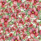 Seamless floral pattern made of red malva flowers on white background. Watercolor painting. Hand drawn and painted illustration. Can be used as for fabric Stock Images