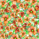 Seamless floral pattern made of red and orange malva flowers on white background. Watercolor painting. Hand drawn and painted illustration. Can be used as for Royalty Free Stock Image