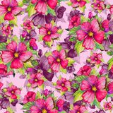 Seamless floral pattern made of red and purple malva flowers on pink background. Watercolor painting. Hand drawn and painted illustration. Can be used as for Royalty Free Stock Image