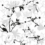 Seamless floral black and white pattern with magno Royalty Free Stock Images