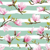Seamless Floral Pattern. Magnolia Flowers Royalty Free Stock Images