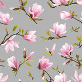 Seamless Floral Pattern. Magnolia Flowers and Leaves Background. Royalty Free Stock Photography