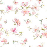 Seamless floral pattern with magnolias on a white background, watercolor. Vector illustration Royalty Free Stock Photography