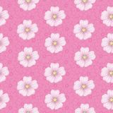 Seamless floral pattern, mallow and cosmos Stock Photo