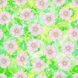 Seamless Floral Pattern, Mallow Stock Photo