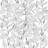 Seamless floral pattern, Nettle wild field flower isolated on white background, hand drawn ink sketch vector, line art. Illustration Urtica dioica for design Royalty Free Stock Image
