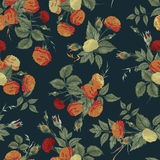 Seamless floral pattern with orange and white roses. Vector back Stock Photography