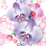 Seamless floral pattern with orchid Royalty Free Stock Photography