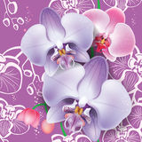 Seamless floral pattern with orchid Royalty Free Stock Photo