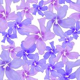 Seamless floral pattern Lilac flowers on a white background. Botanical illustration. Design for packaging, fabric, textile, wallpa