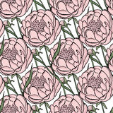 Seamless floral  pattern peony. Flowers and leaves, can be used as greeting card, invitation card for wedding, birthday and Royalty Free Stock Image