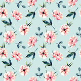 Seamless floral pattern with pink anemone flowers and green leaves Royalty Free Stock Photos