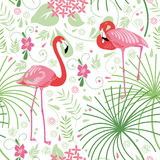 Seamless Floral Pattern, Pink Flamingo Royalty Free Stock Photo