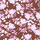 Seamless floral pattern with pink flowers Stock Image