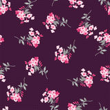 Seamless floral pattern with pink flowers Royalty Free Stock Image