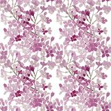 Seamless floral pattern. Pink flowers lilac. Vector background banner. Seamless pattern. Pink flowers lilac. Vector background Stock Photos