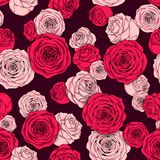 Seamless floral pattern of pink rose buds Royalty Free Stock Image