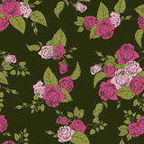 Seamless floral pattern with pink roses on green background Stock Image