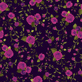 Seamless floral pattern with pink roses Stock Image