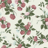 Seamless floral pattern with pink and white roses Stock Image